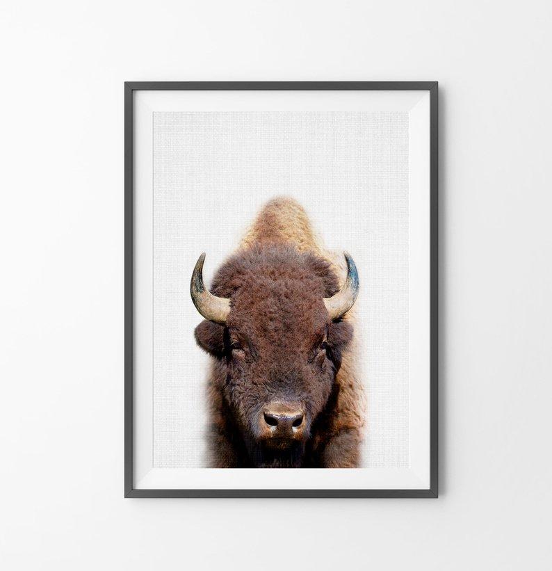 buffalo nursery print