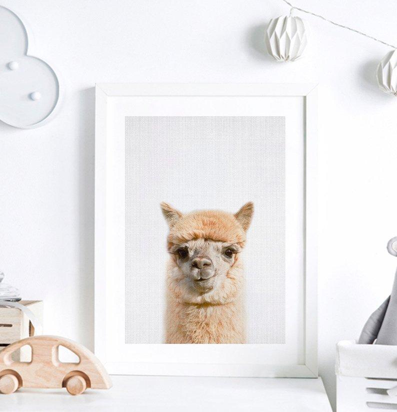 alpaca nursery print