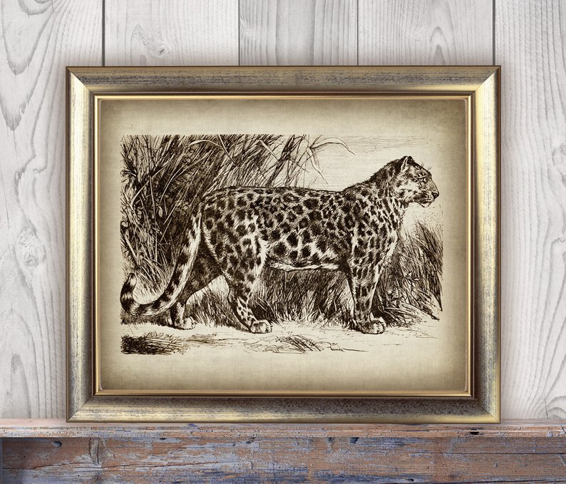 vintage leopard print