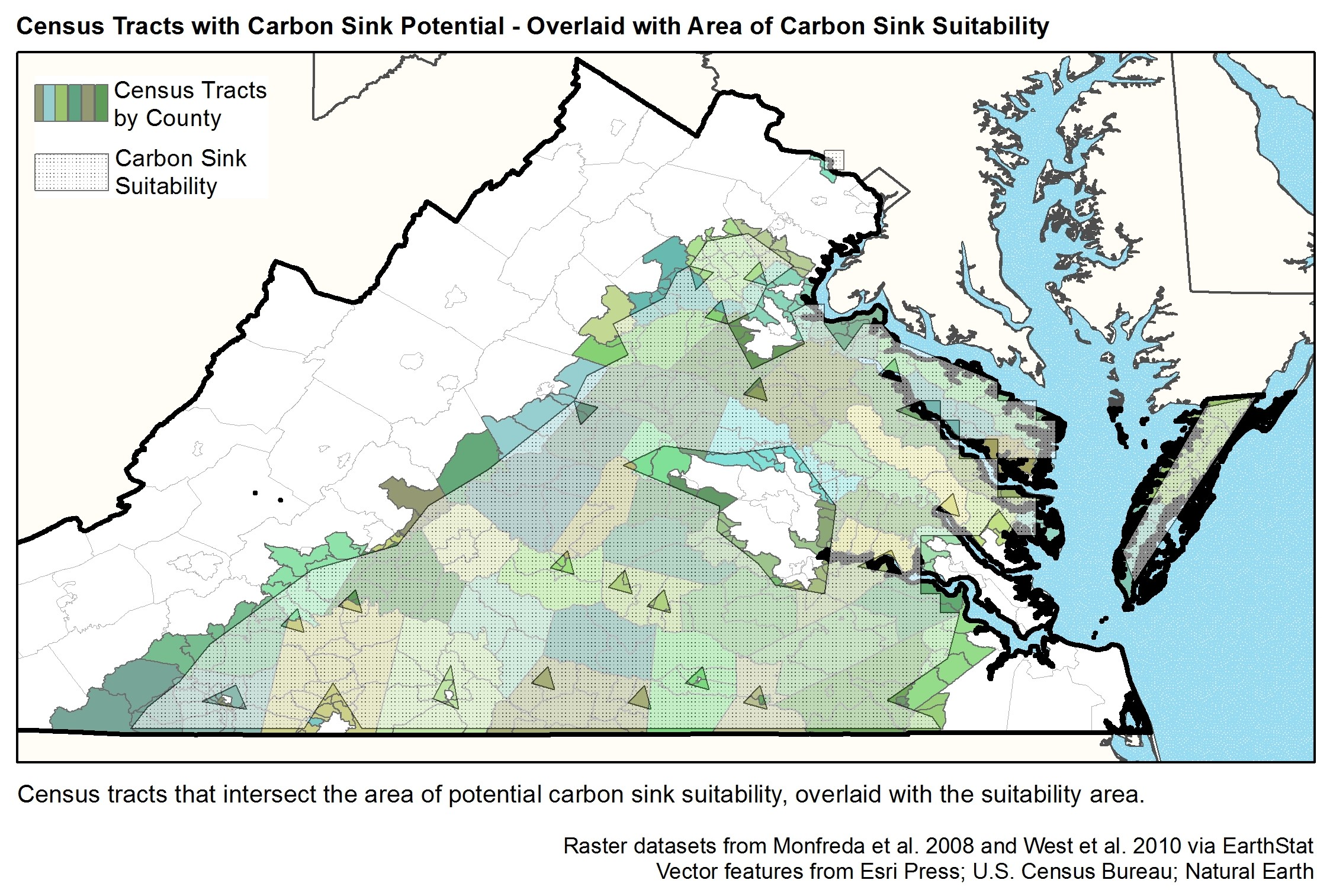 PROJECT 2 Overlaid CarbonSink CensusTracts.jpg