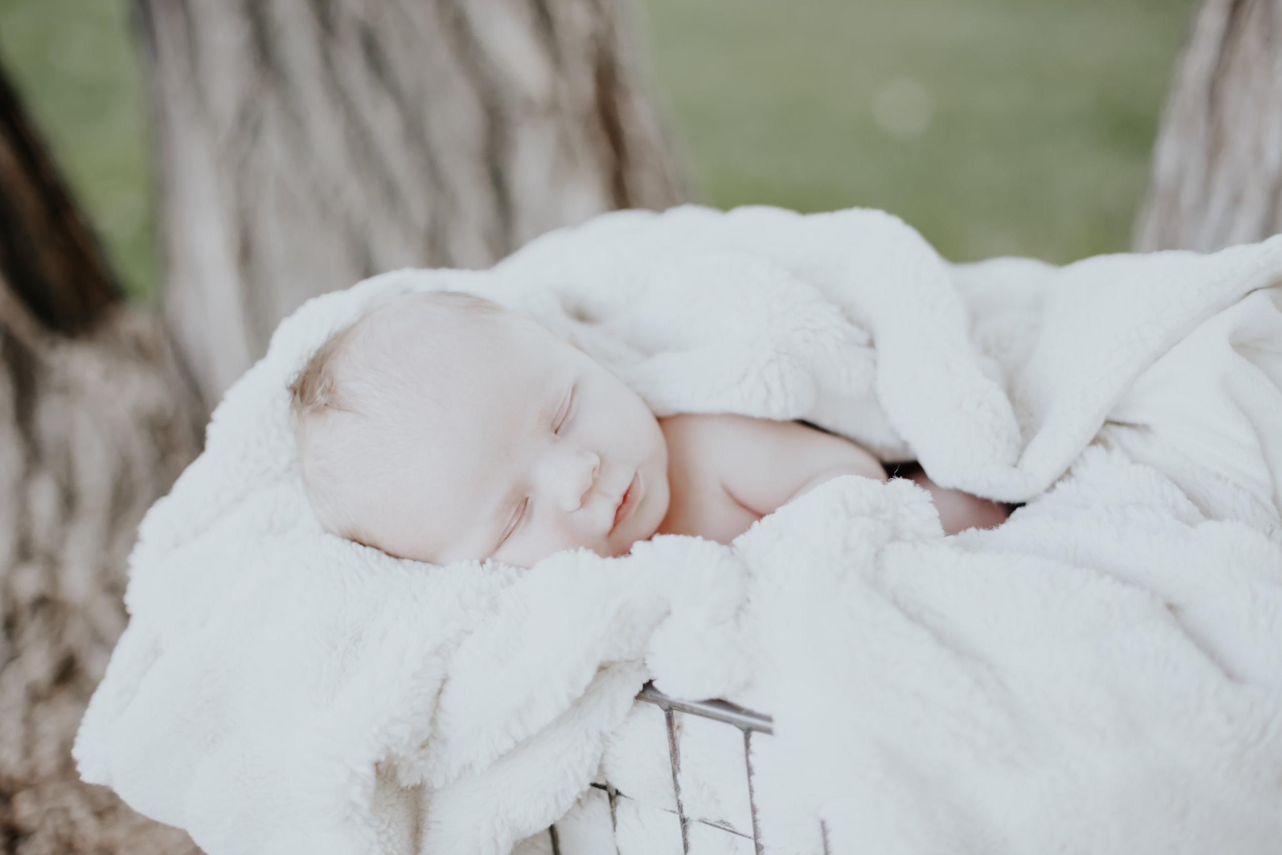 Carver Baki Newborn-5.jpg