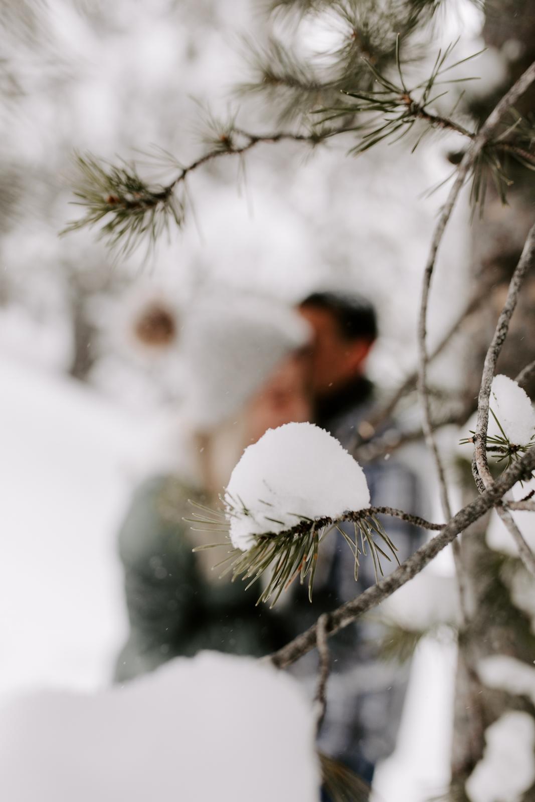 Vanessa & Danny Snow Rocky Mountain National Park Engagement Elopement Photography Photographer-72.jpg