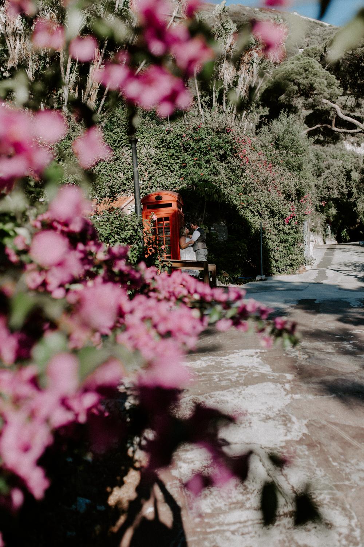 botanic gardens elopement in Gibraltar, Gibraltar, UK-20.jpg