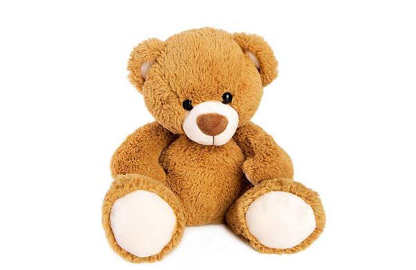 Teddy bear photo.JPG