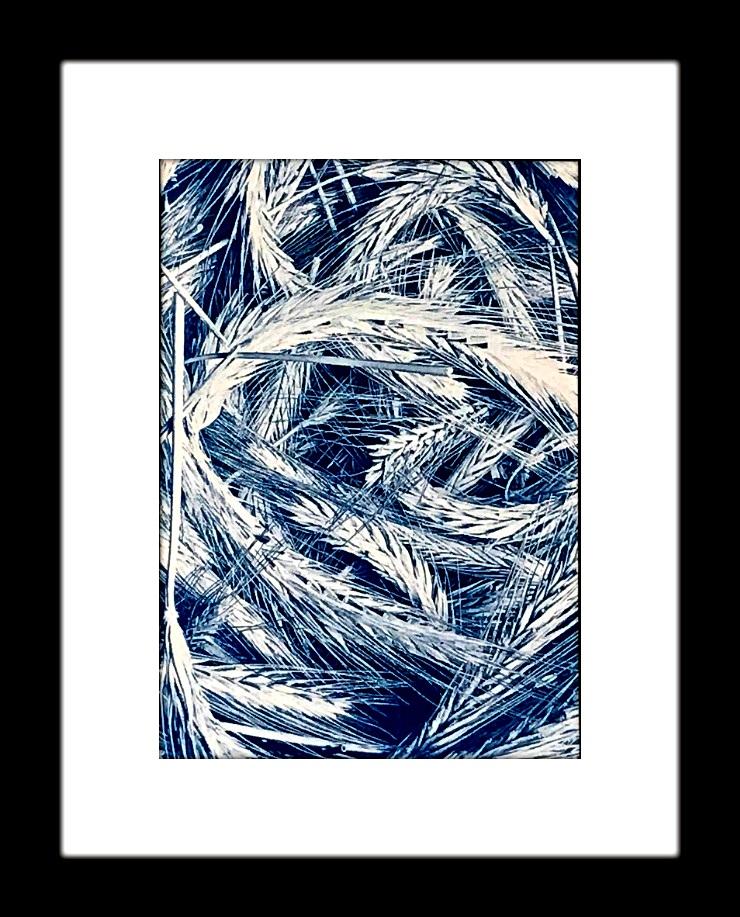 wheatwebFinal.jpg