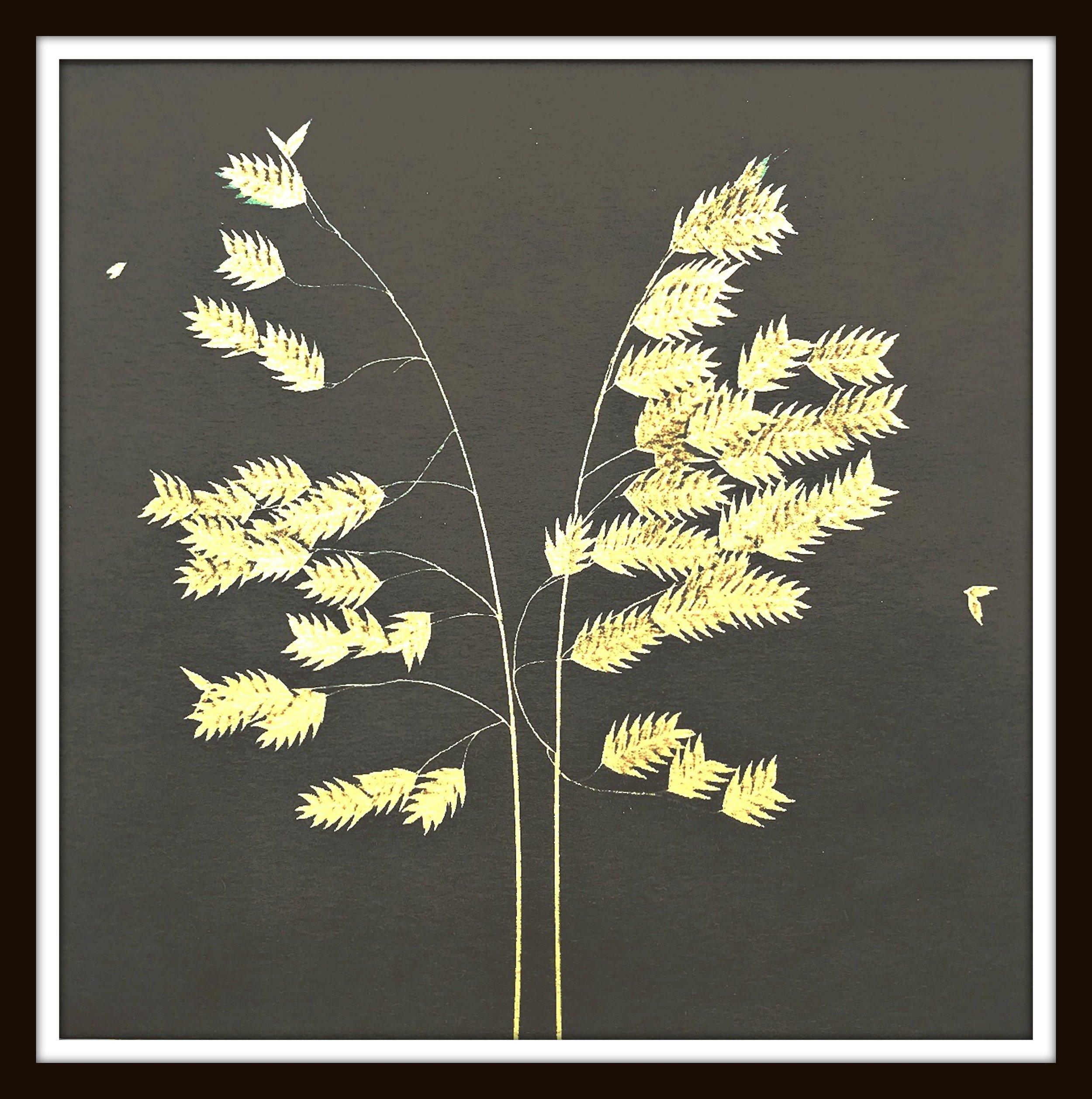 oatgrassWEBframed.jpg