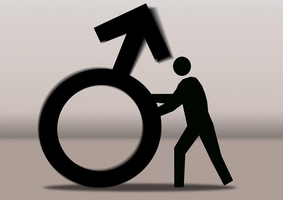 Andrologie, dysfonction érectile et infertilité masculine