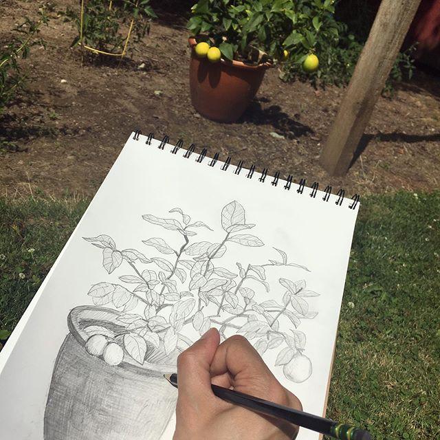 Afternoon sketch break
