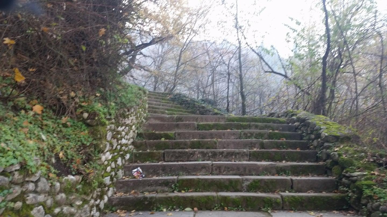Creatrix Staircase.jpg