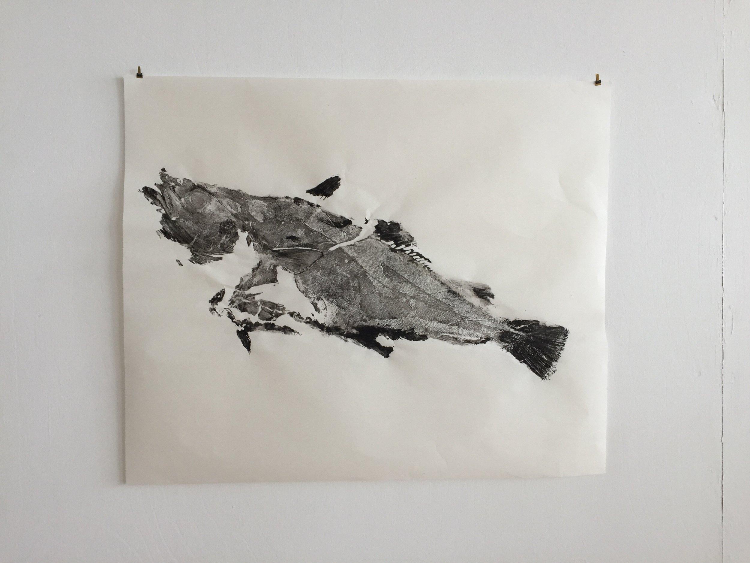 Cod Gyotaku, 2019