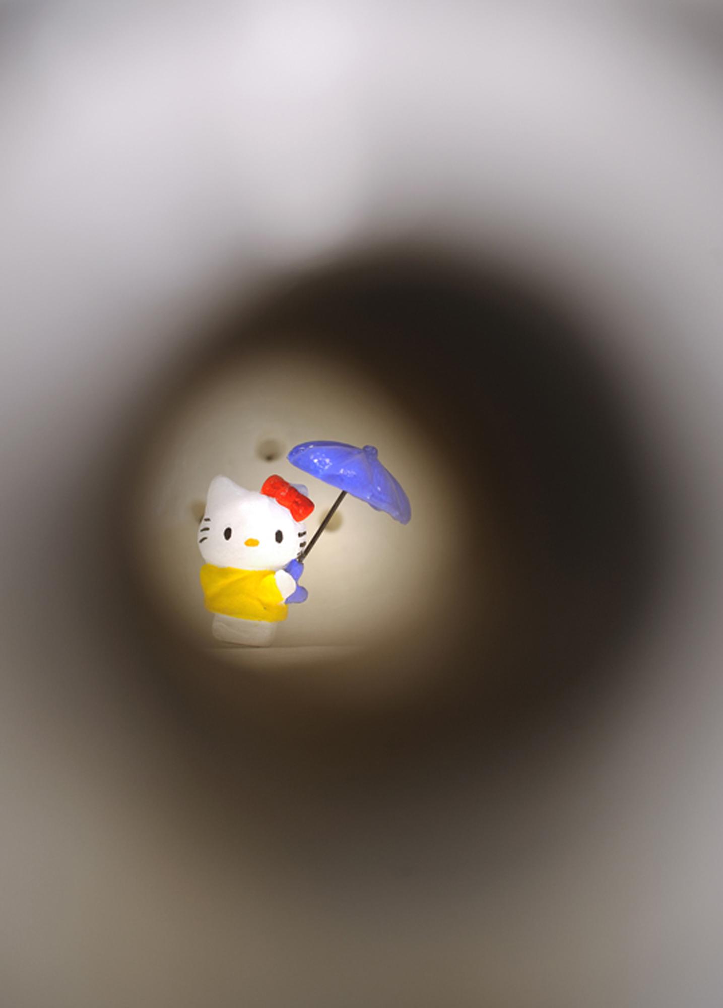 Hello Duchamp (it's raining men) detail