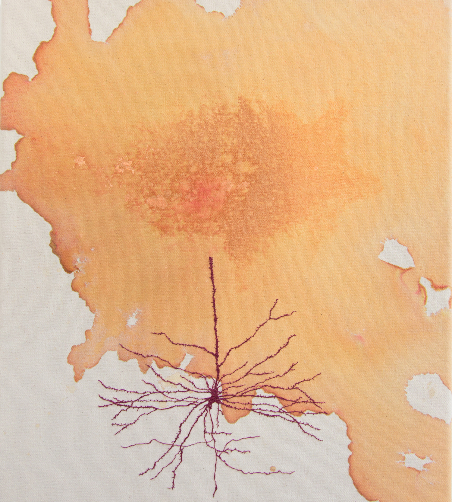Neuron Stain (after Cajal)