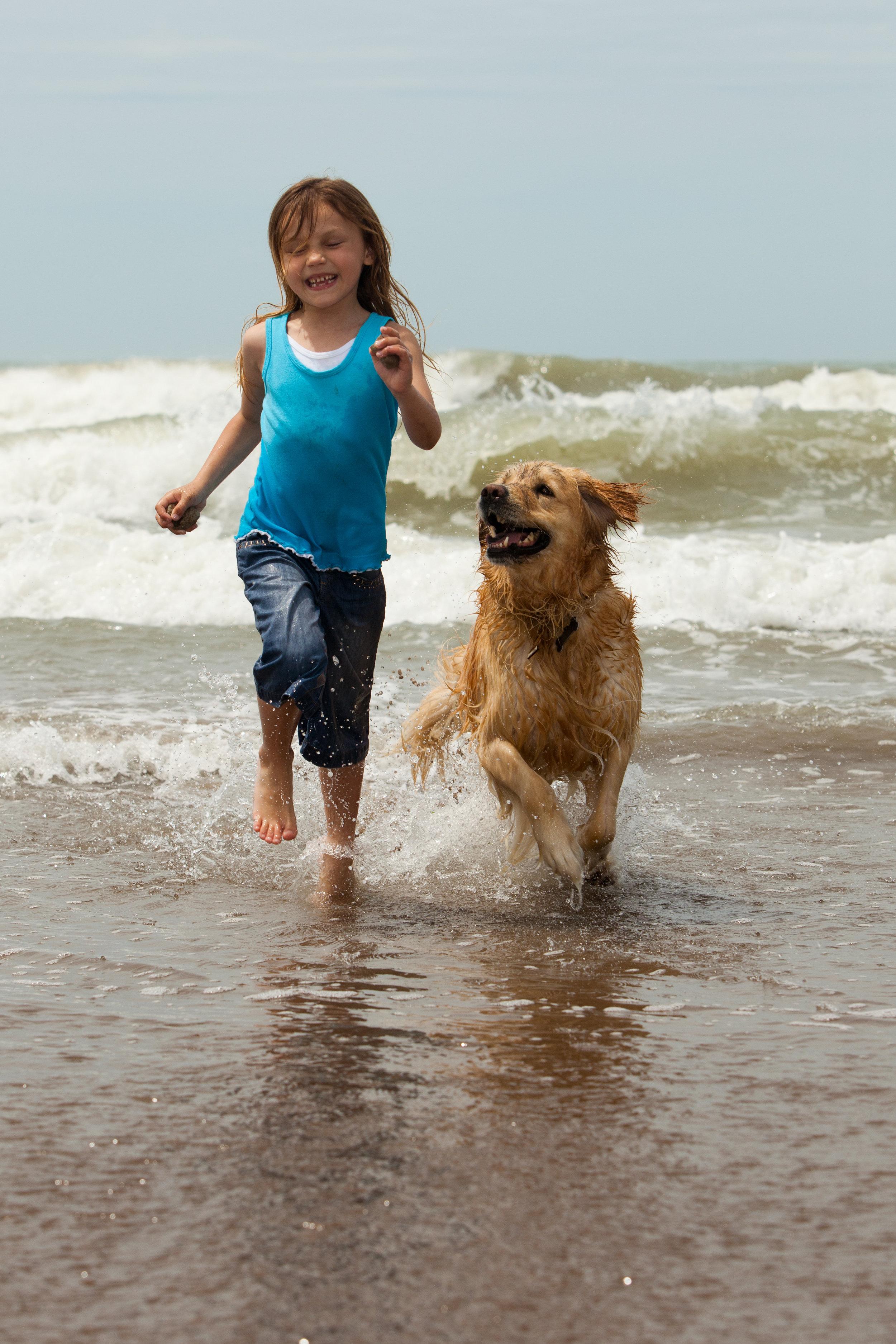 coat_defense_for_dogs_2.jpg