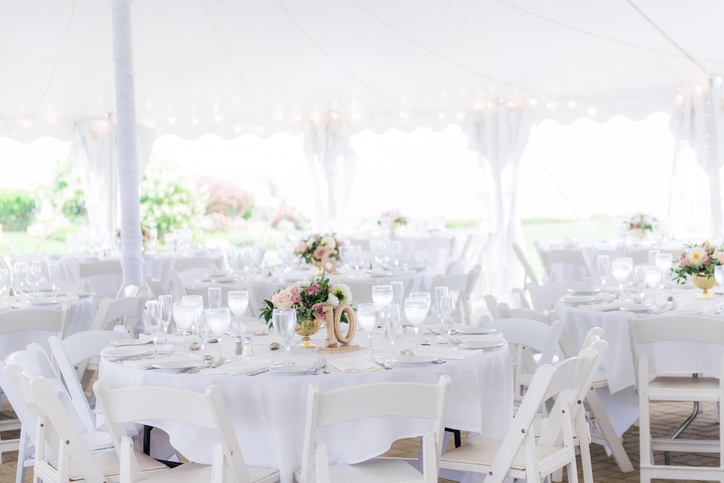 Kayla_Chris_Wedding_WhiteCliffs-486.jpg
