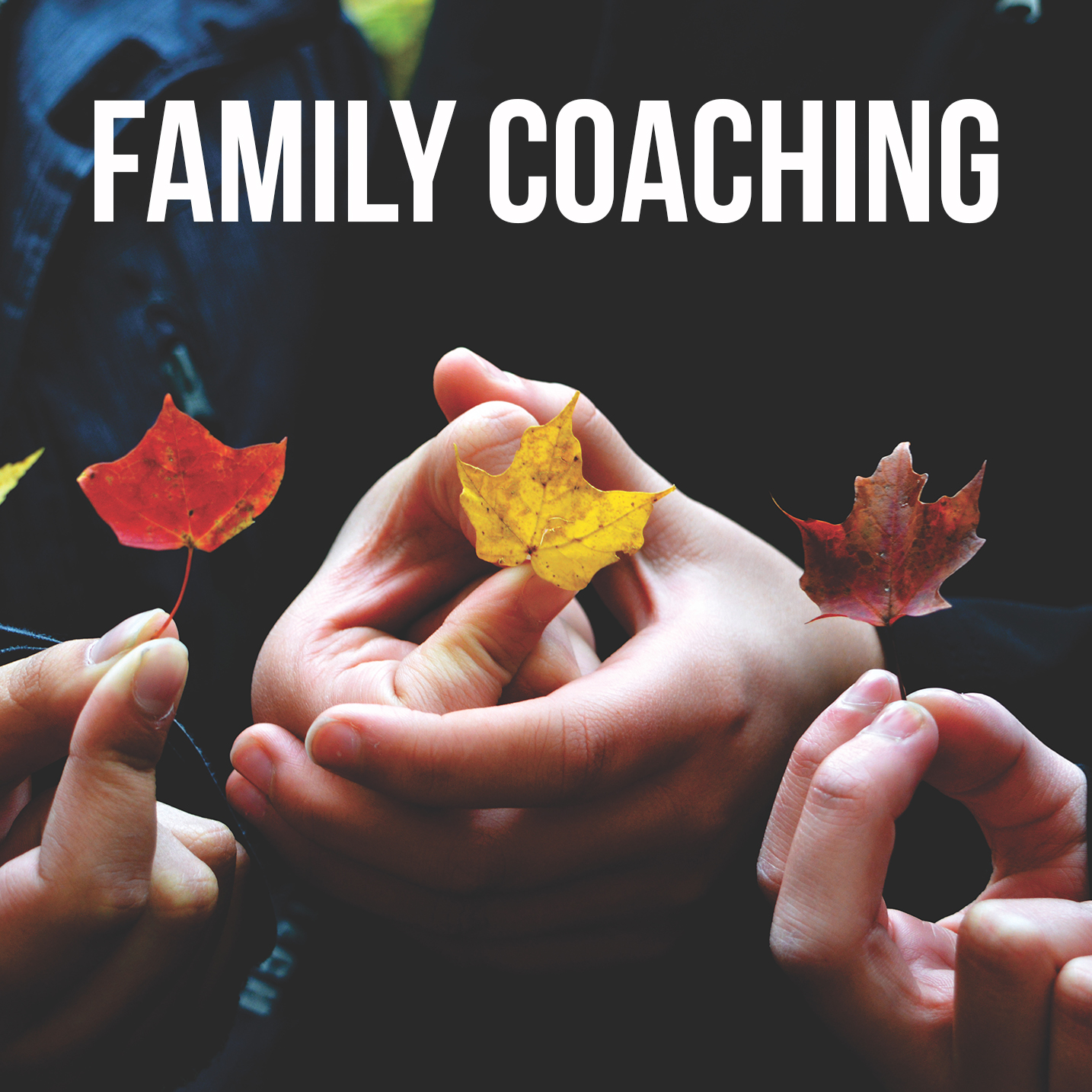 Health Coach Family Coaching