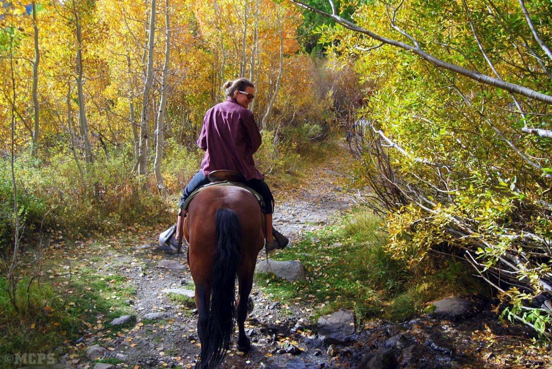 A rider explores fall color near horsetail falls