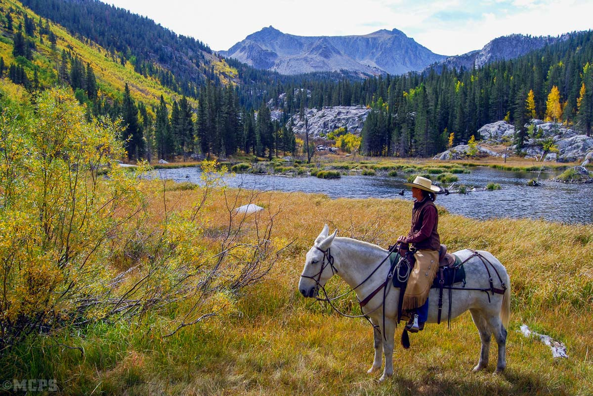 McGee Canyon and the Beaver Ponds: A September horseback ride here is one to remember, and one of the top 10 things to do in Mammoth