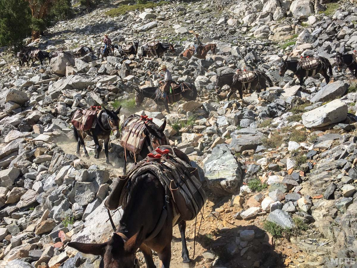 Rocky mountain trails: Let our pack mules and horses do the work while you enjoy the views of the John Muir Wilderness, McGee Pass, and big McGee Lake