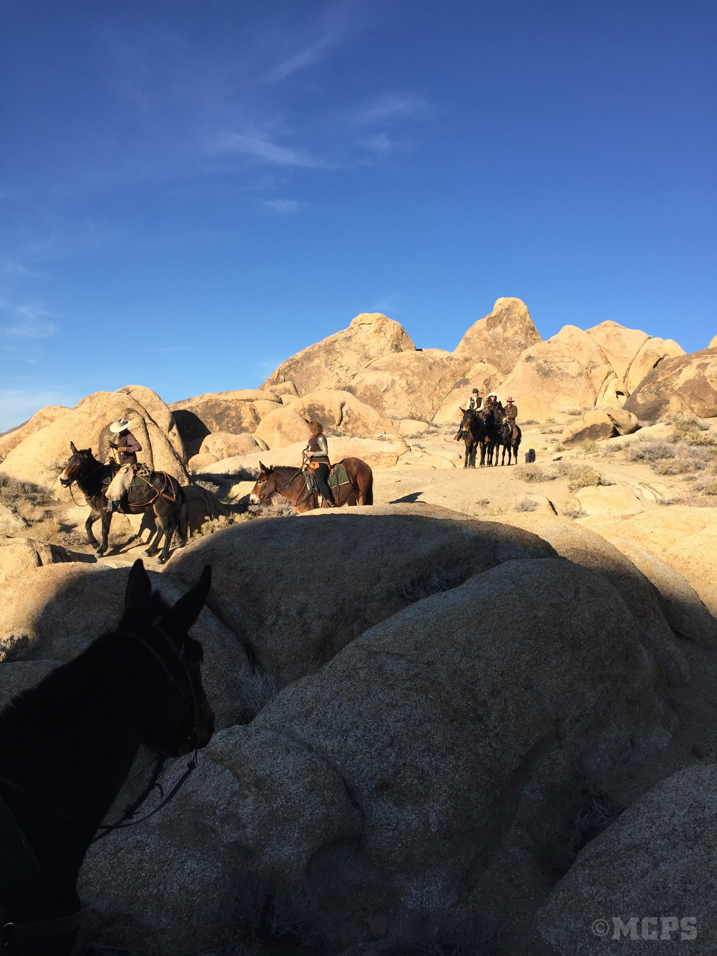 McGee Creek Pack Station loves the Alabama Hills.