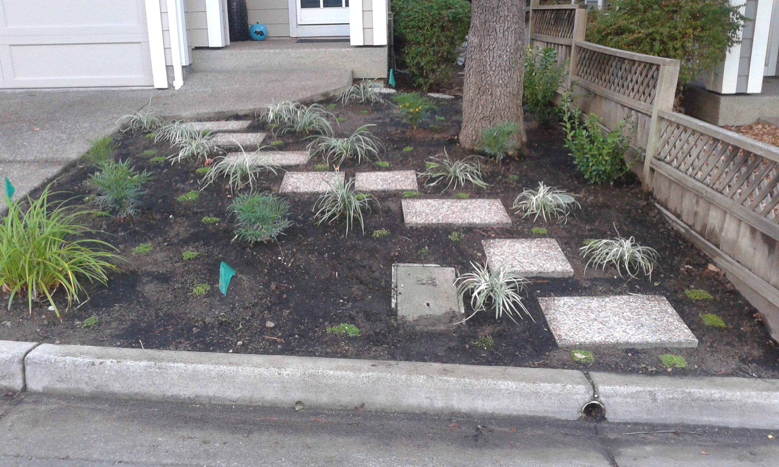 AFTER Plant Installatlion Right of Driveway from street.jpg