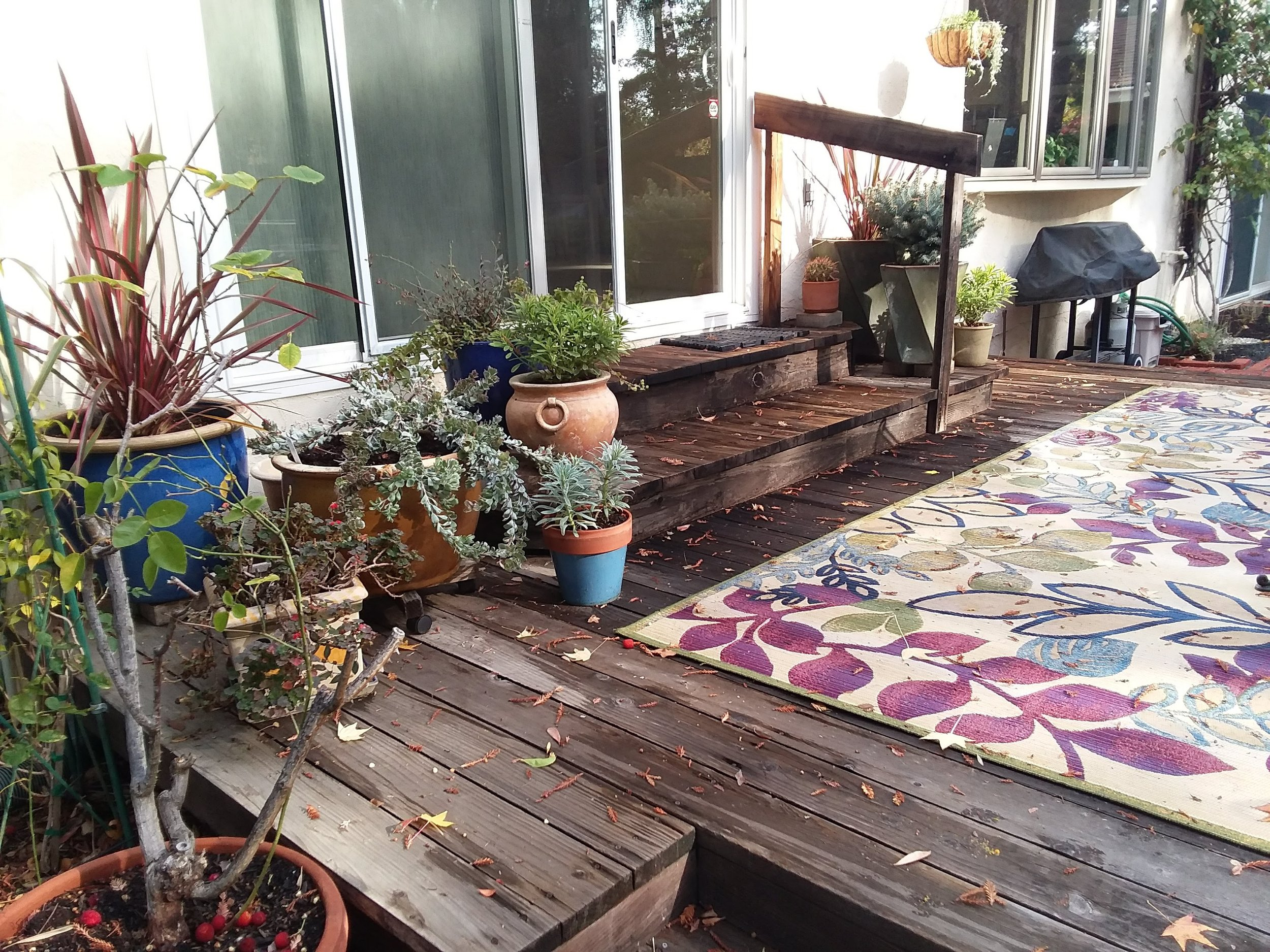M'lou's back patio on Mon., Nov. 26, 2018 showing deck pots and area rug -1.jpg