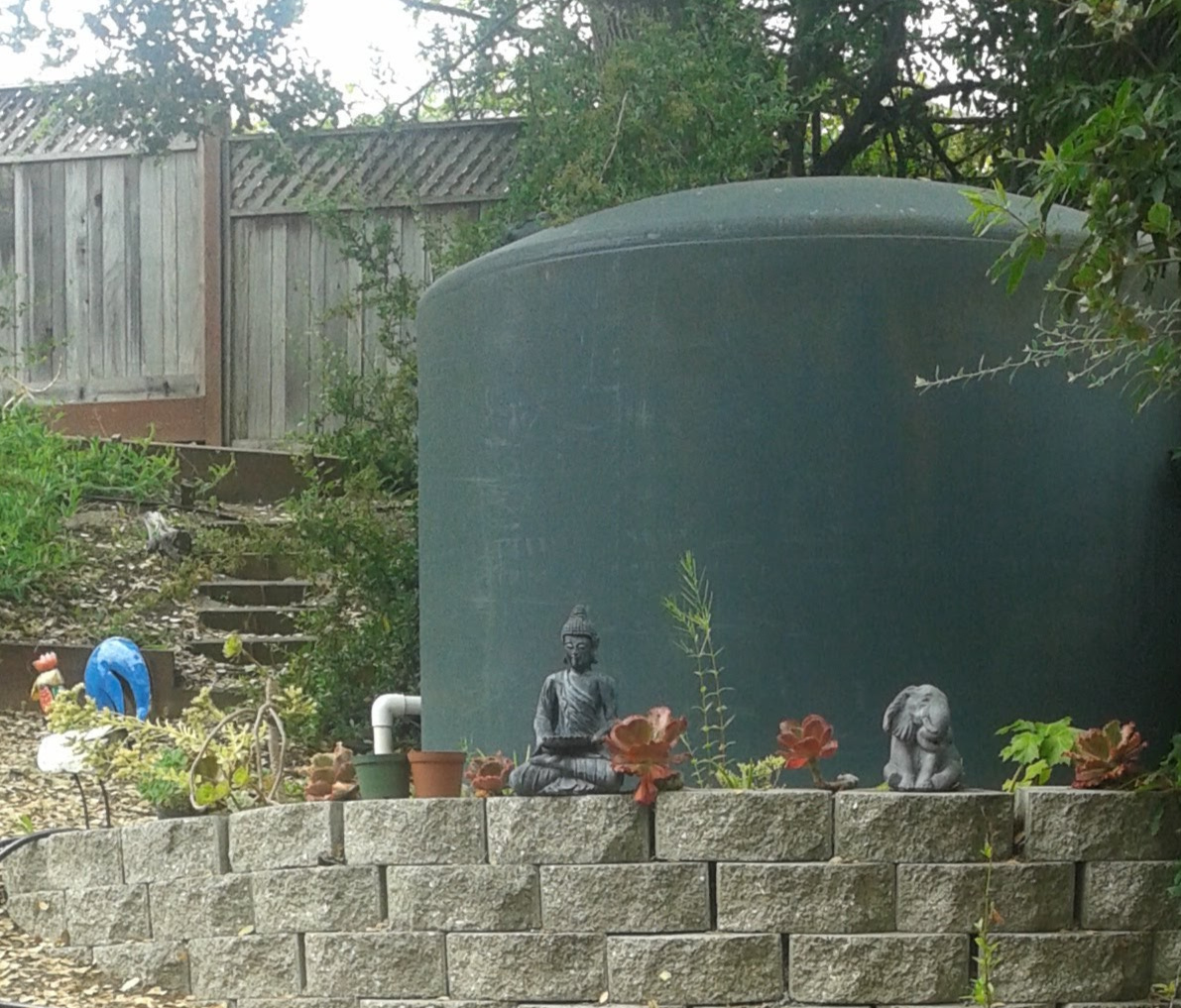 Norma's 2,500 gallon water tank and succulent wall on Tues., June 19, 2018.jpg