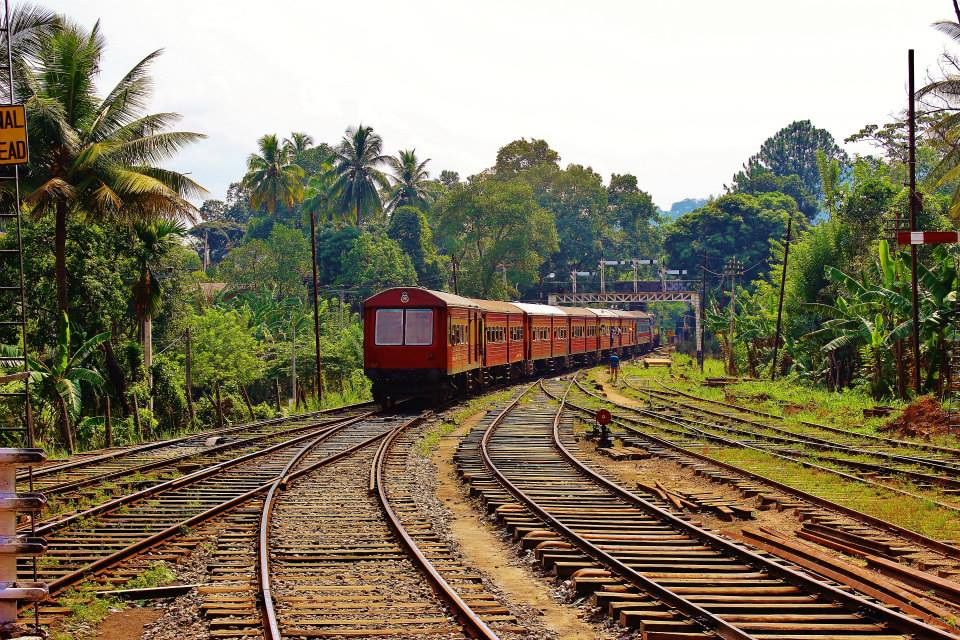 The train that headed through Sri Lanka's beautiful tea country toward Ella