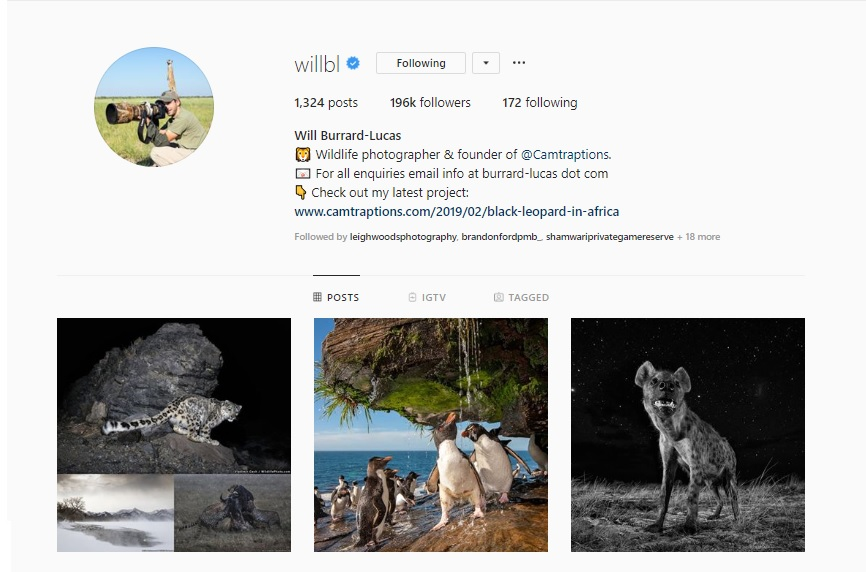 21 Inspiring Wildlife Photographers to Follow on Instagram