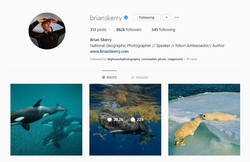 Click for  Brian Skerry's Instagram