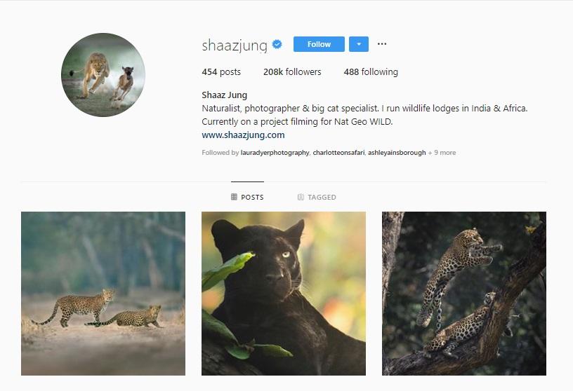 Click for  Shaaz Jung's Instagram