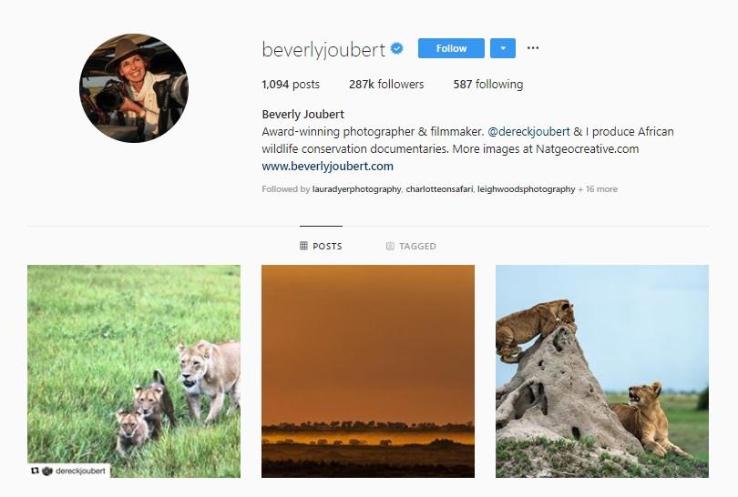 Click for  Beverly Joubert's Instagram