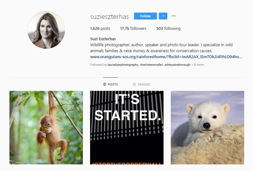 Click for  Suzi Ezsterhas's Instagram