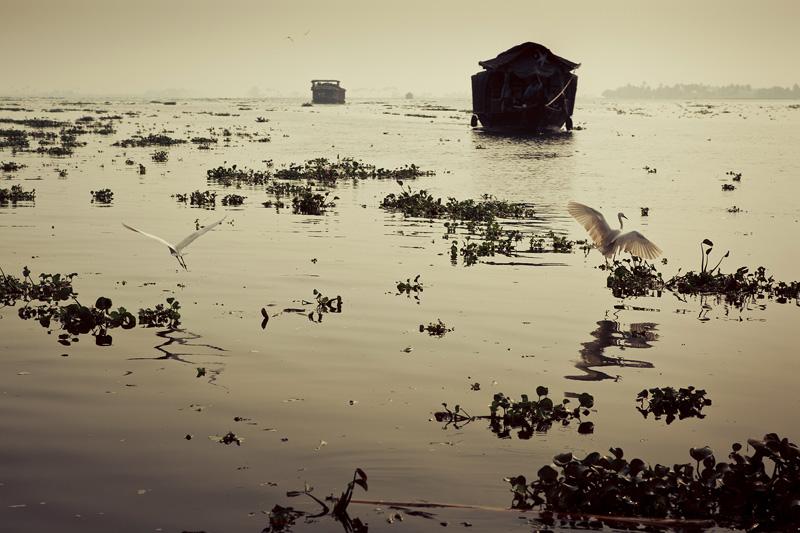 ©ThomasWoollard2012_India-3185.jpg
