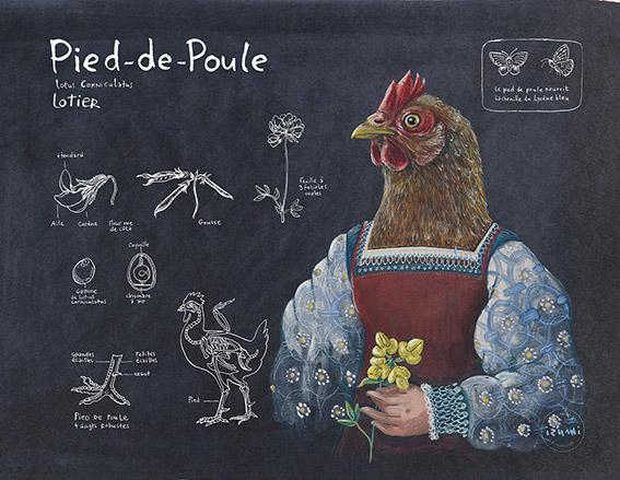 izumi_bestiaire_botanique_PIED_DE_POULE_web.jpg
