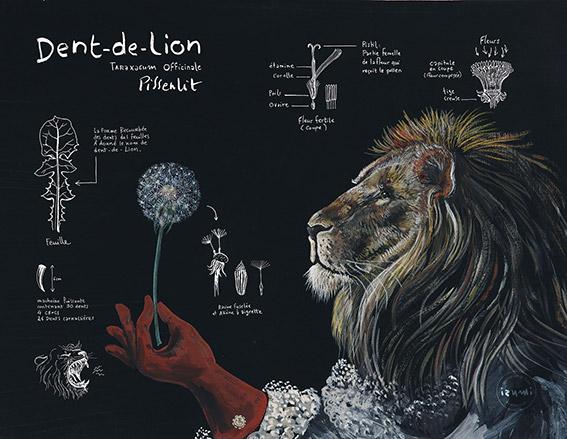 izumi_bestiaire_botanique_DENT_DE_LION_web.jpg