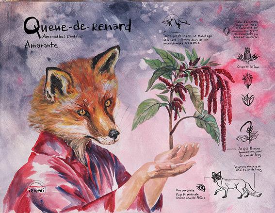 izumi_bestiaire_botanique_QUEUE-DE-RENARD_web.jpg