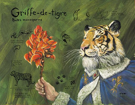 izumi_bestiaire_botanique_Griffe-de-tigre_web.jpg