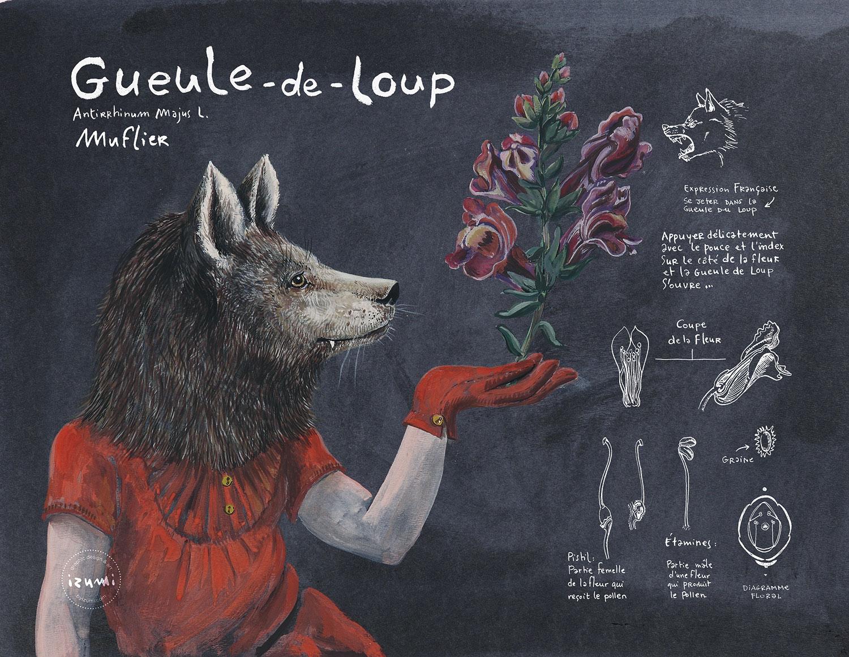 GUEULE-DE-LOUP_15X10.jpg