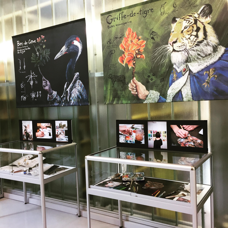 EXPOSITION BESTIAIRE BOTANIQUE - ORIGINAUX, REPRODUCTIONS, VITRINE ATELIER D'IZUMI, PARCOURS BOTANIQUE…