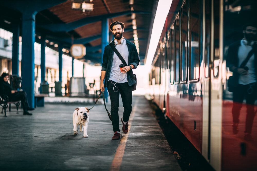 Walking - Get your dog some more exercise each day.
