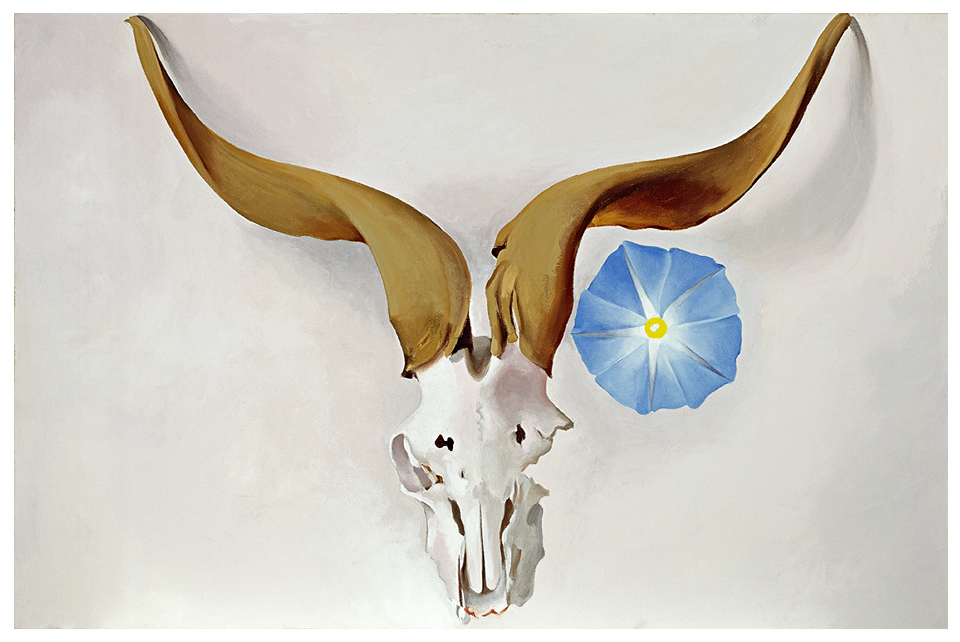 Ram's Head, Blue Morning Glory; 1938