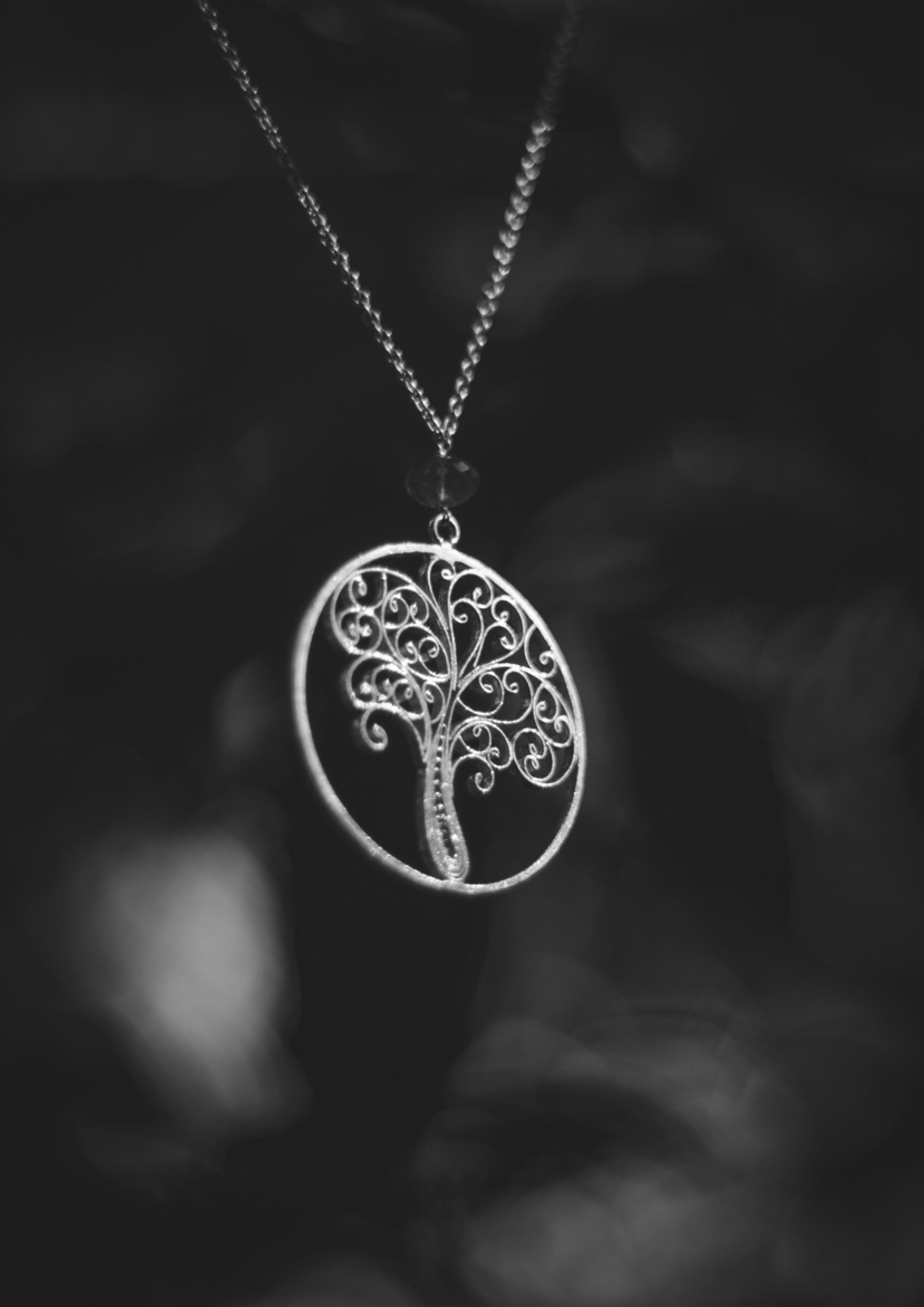Jewelry Necklace.jpg