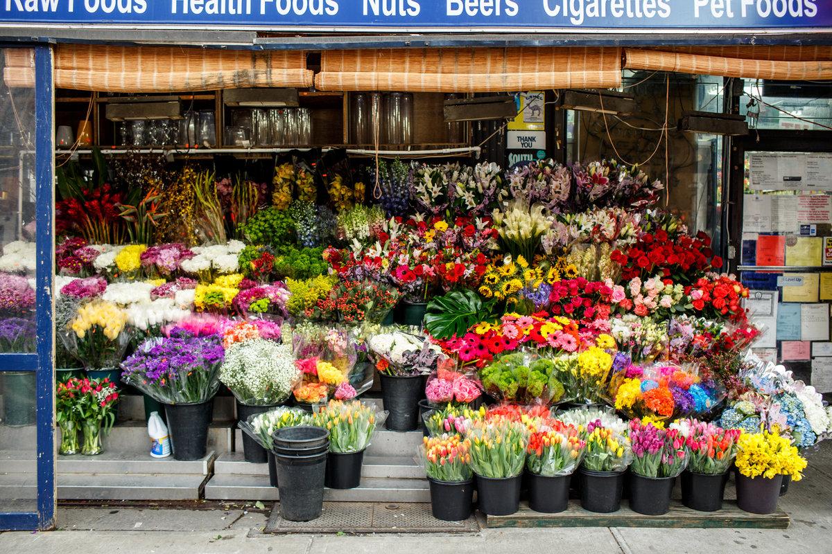 13 NYC Tulips.jpg