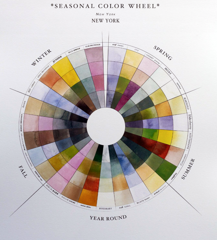 The Seasonal Color Wheel by Sasha Duerr