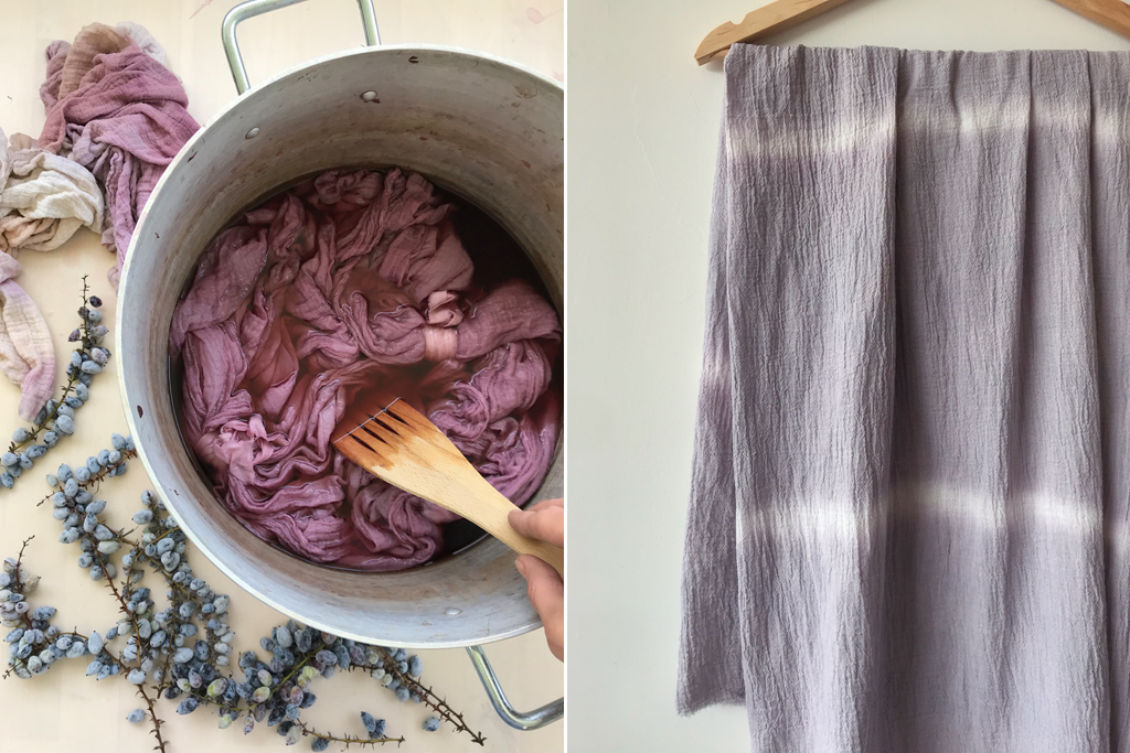 Mahonia Berry Dye from Rebecca Desnos