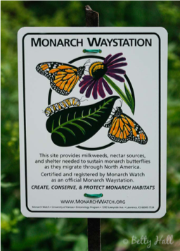 Monarch Station.png