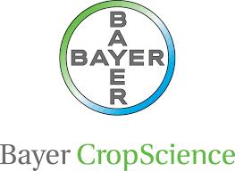 Bayer CS.png