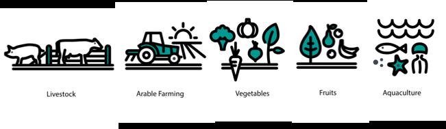 Smart Digital Farming