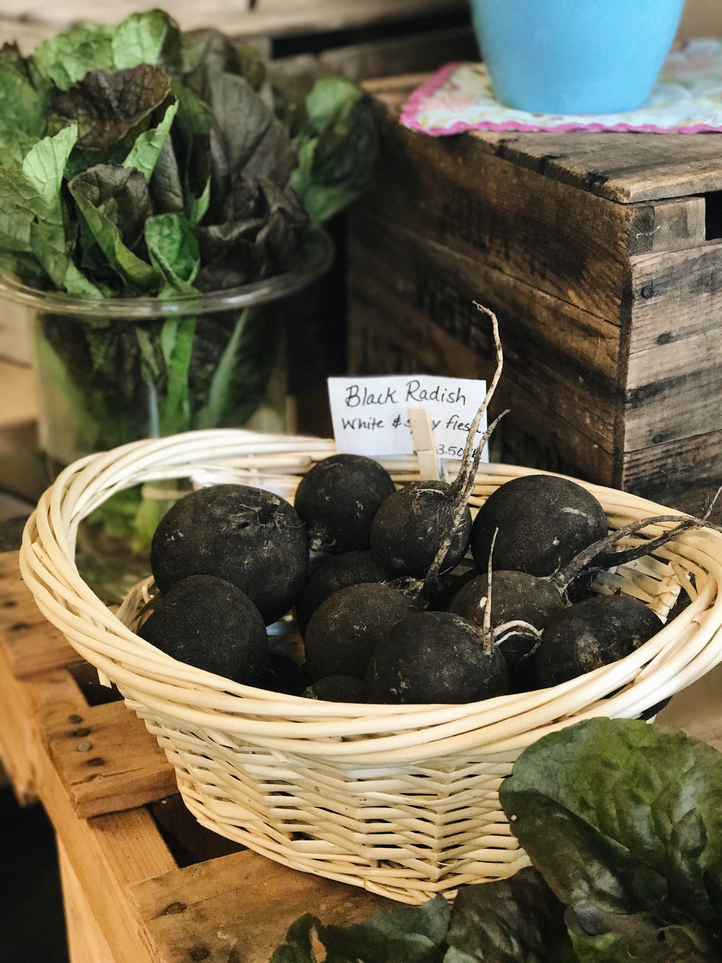 black radish.JPG