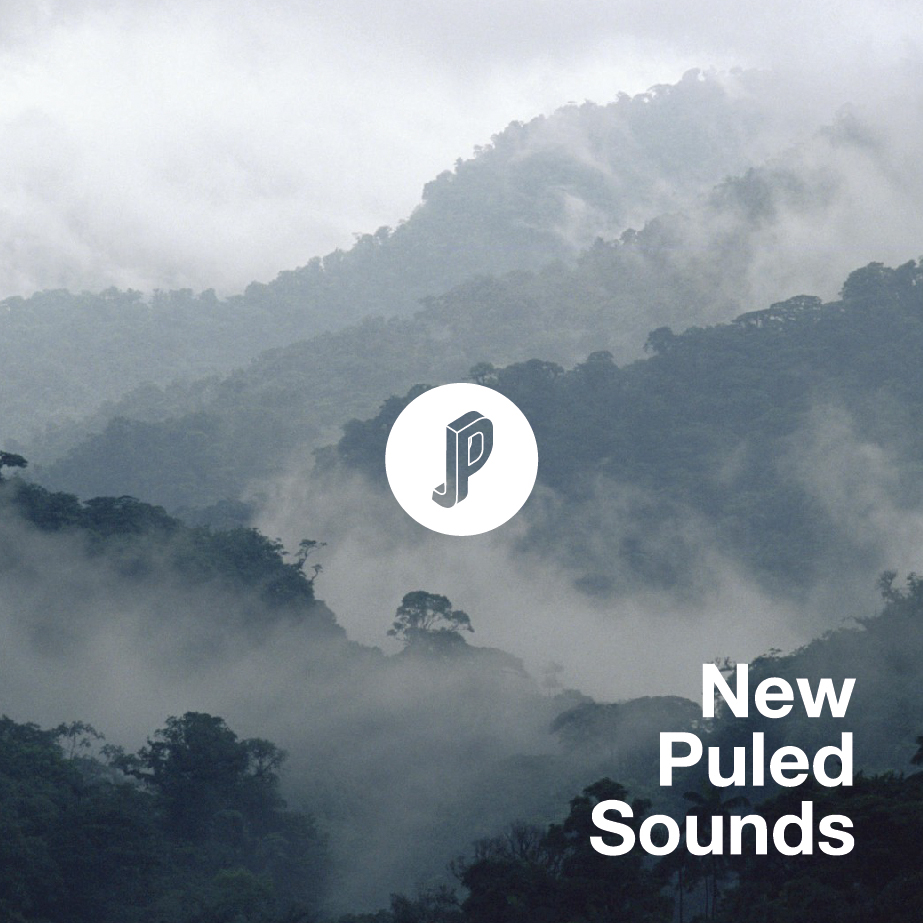 New Puled Sounds4.jpg